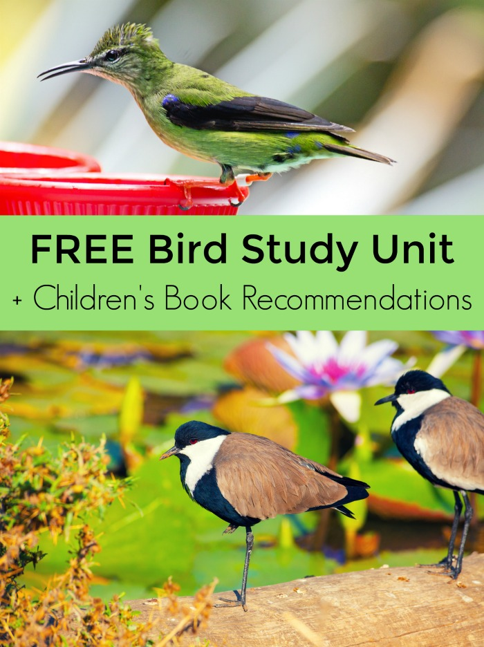FREE Bird Study Unit Resources + Wonderful books about birds for kids
