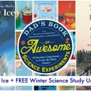 Educational Books About Ice for Kids (Winter Science Study Unit)