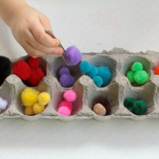 Pom Pom Color Sorting