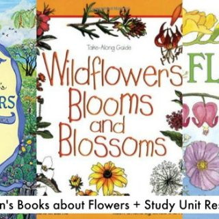 Inspiring Children's Books about Flowers