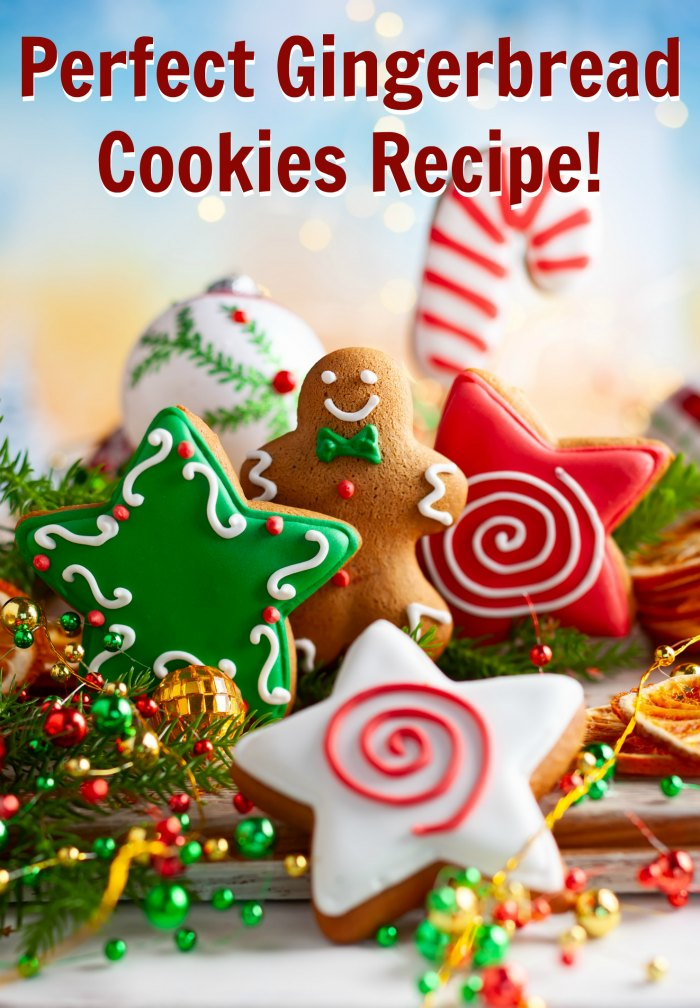 Perfect gingerbread cookies recipe | Mommy Evolution