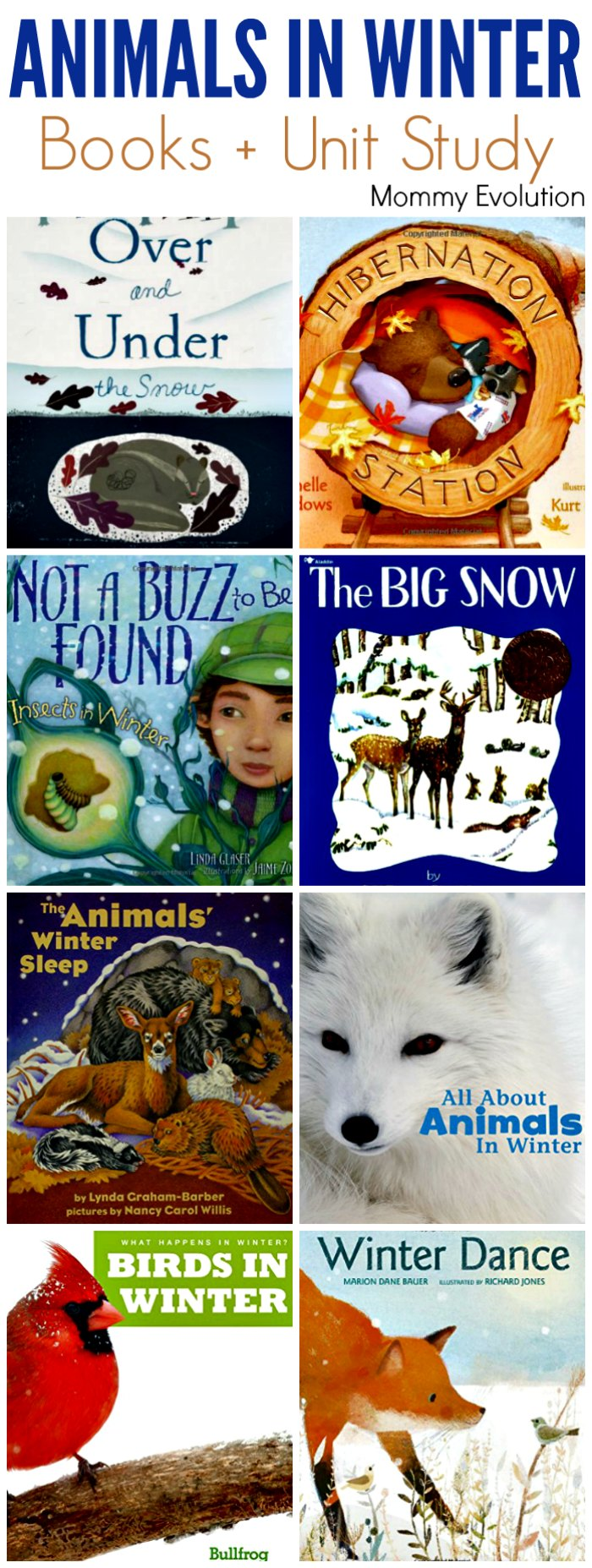 Animals in Winter Books for Kids - Awesome books about what animals do in winter, from hibernation to migration to foraging | Mommy Evolution