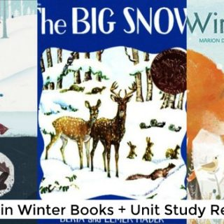 Animals in Winter Books for Kids