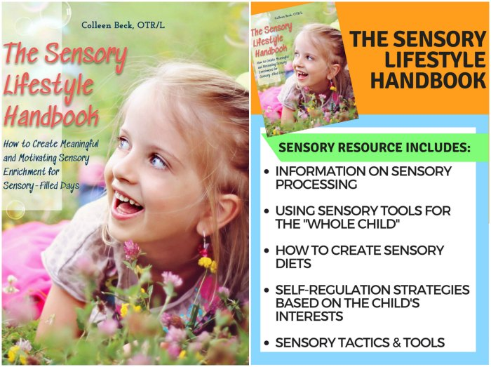 The Sensory Lifestyle Handbook - How to create meaningful and motivating sensory enrichment for sensory-filled days