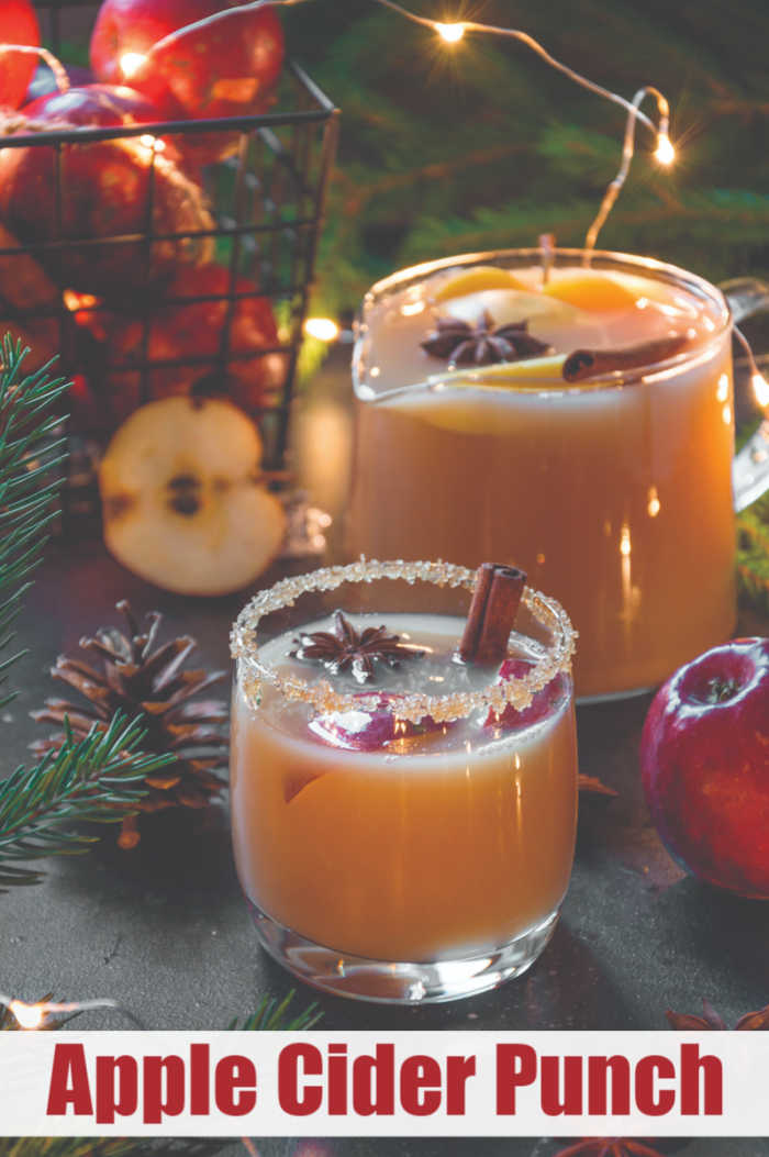 Apple Cider Punch Recipe - Old-Fashion Trendy Beverage Perfect for the Christmas Holiday | Mommy Evolution