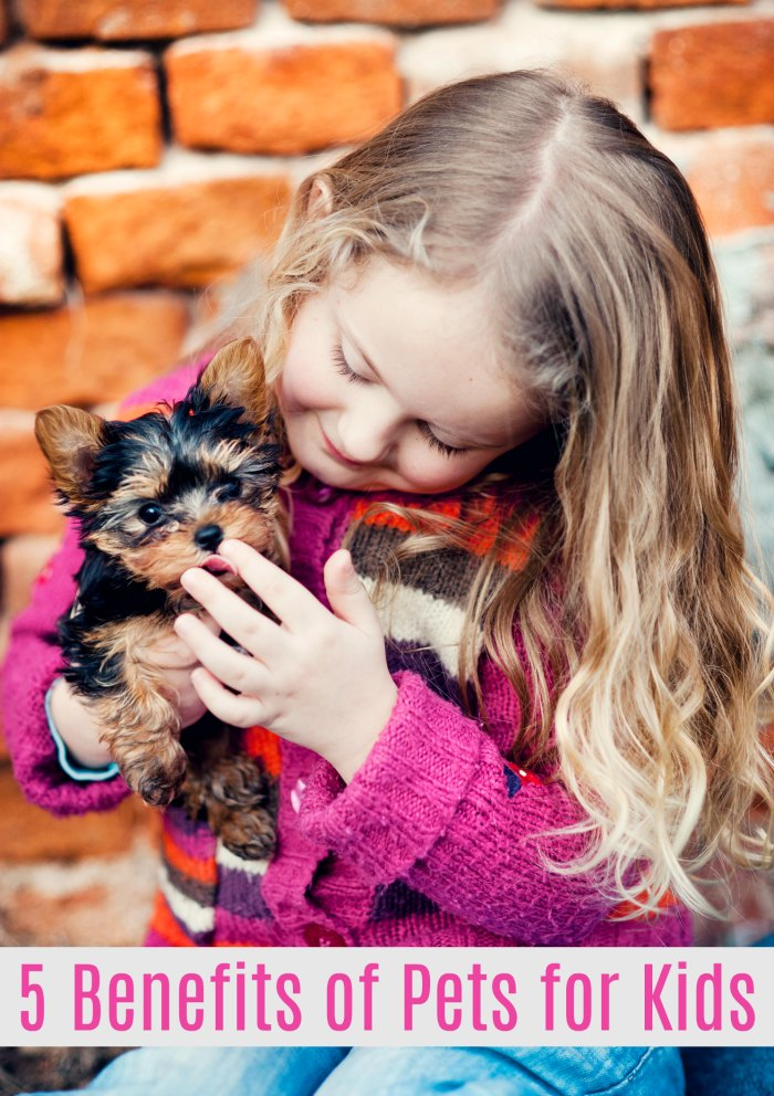 5 Benefits of Pets for Kids - benefits of pets on mental health | Mommy Evolution