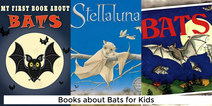 Books about Bats for Kids