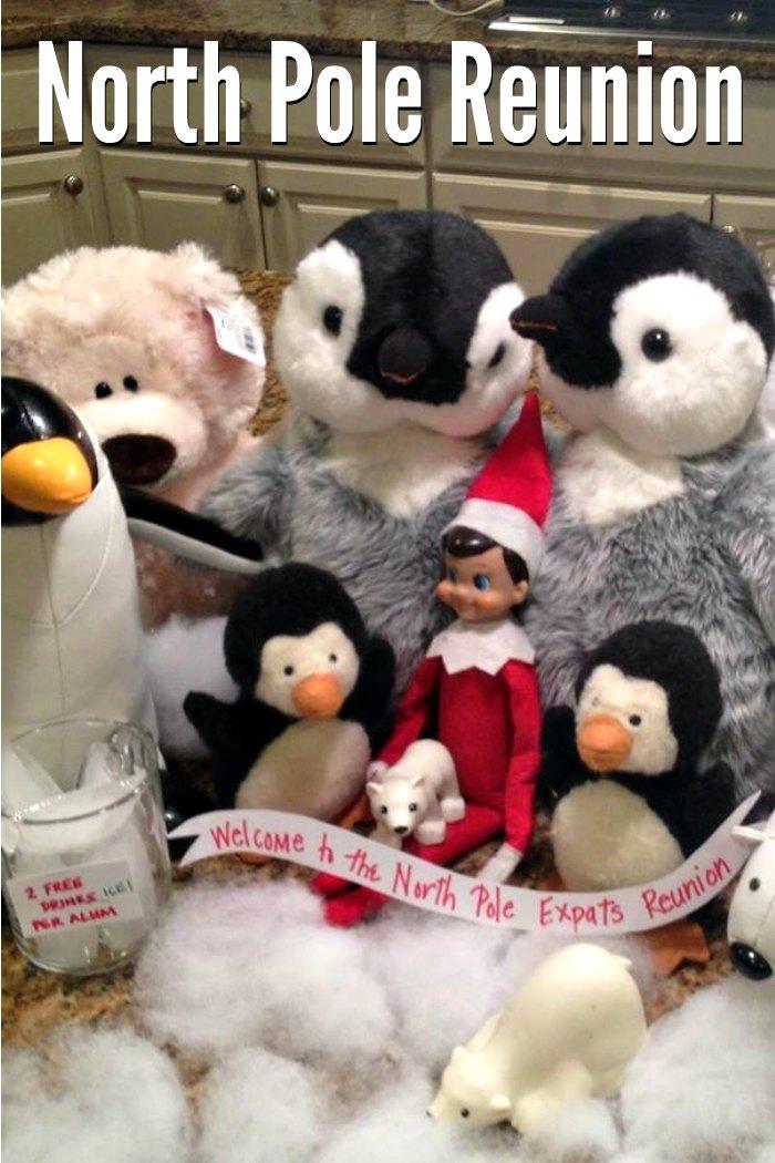 North Pole Reunion for Elf on the Shelf | Mommy Evolution #elfontheshelfideas #elfontheshelf