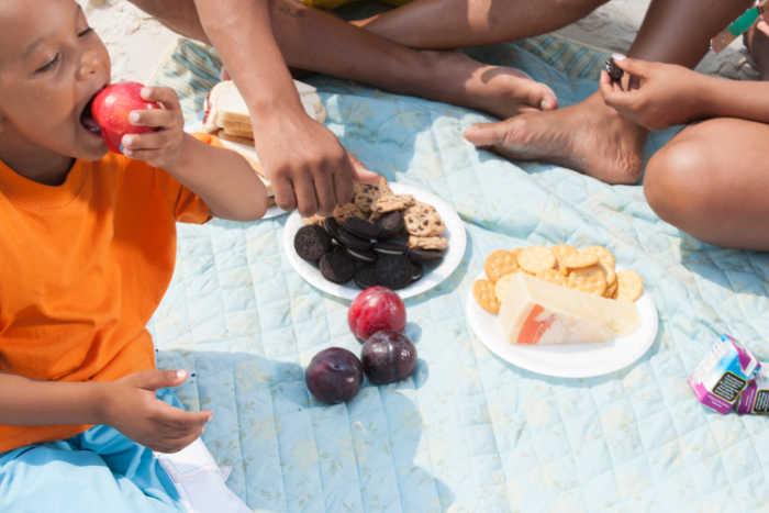 Family having a picnic at the beach